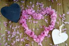 Сердца и цветение Стоковая Фотография RF