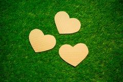 3 сердца картона на траве Стоковые Изображения