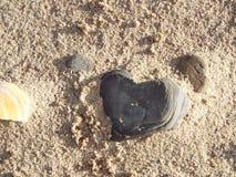 сердца красные Стоковые Изображения RF