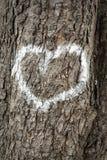 Сердца на дереве Стоковое Изображение