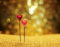 2 сердца штырей на праздничной мерцающей предпосылке Стоковое Изображение RF