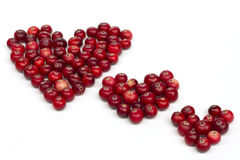 Сердца ягоды стоковые изображения