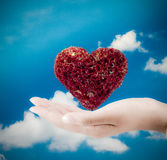 Сердце в наличии Сердце на ладони - символ влюбленности Стоковое фото RF