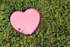 Сердце в траве Стоковое Изображение