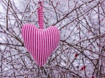 Сердце в форме подушек Стоковое Изображение