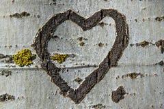 Сердце гравируя дерево Стоковые Изображения