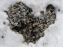 Сердце зимы, символ влюбленности Стоковое Изображение RF