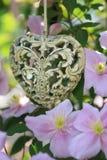 Сердце и Clematis стоковая фотография rf