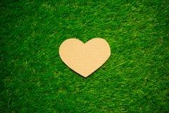 Сердце картона на траве Стоковые Изображения RF