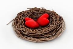Сердце 2 красных цветов в гнезде птицы Стоковое Фото