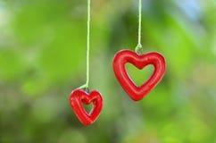2 сердца для влюбленности Стоковые Фото