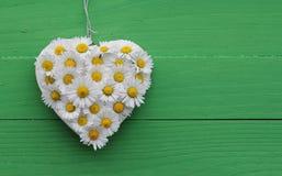 Сердце маргаритки на зеленом цвете Стоковая Фотография RF