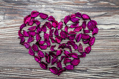 сердце мое портфолио к гостеприимсву valentines Стоковые Изображения
