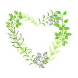 Сердце нарисованное рукой флористическое Стоковые Фото