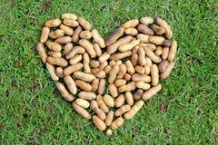 Сердце от гаек Стоковое Изображение RF