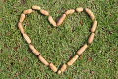 Сердце от гаек Стоковое фото RF