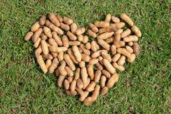 Сердце от гаек Стоковые Фотографии RF