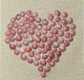 Сердце от раковин Стоковые Изображения
