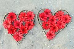 Сердце от цветков Стоковая Фотография RF