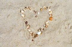 Сердце от cockleshells Стоковые Фотографии RF