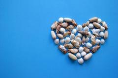 Сердце от seashells на голубой предпосылке на день ` s валентинки Стоковые Фотографии RF