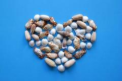 Сердце от seashells на голубой предпосылке на день ` s валентинки Стоковое фото RF