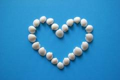 Сердце от seashells на голубой предпосылке на день ` s валентинки Стоковое Изображение