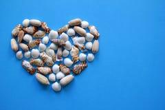 Сердце от seashells на голубой предпосылке на день ` s валентинки Стоковые Фото