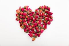 Сердце розовых бутонов на белой предпосылке Стоковые Фотографии RF