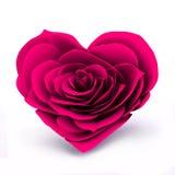 Сердце Розы пинка Стоковое Изображение