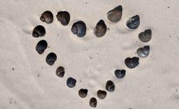 Сердце спиральной улитки Стоковые Фото