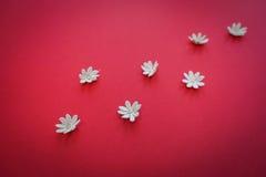 Сердце сделанное с руками с цветками Стоковые Фотографии RF