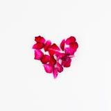 сердце сделало лепестки подняло Влюбленность и романтичная тема Стоковое Фото
