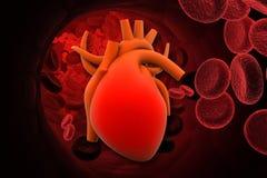 Сердце с эритроцитами иллюстрация вектора