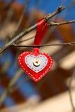Сердце фото декоративное на ветви Стоковые Изображения RF