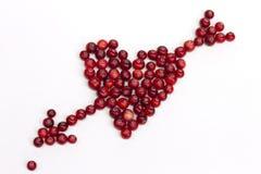 Сердце ягоды стоковое фото rf