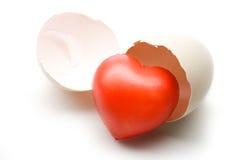 сердце eggshel Стоковая Фотография RF