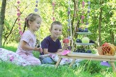 Сестра и брат имея потеху на пикнике Стоковое Изображение RF