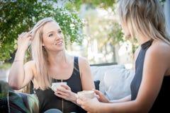 2 сестры выпивая кофе на софе Стоковые Изображения RF