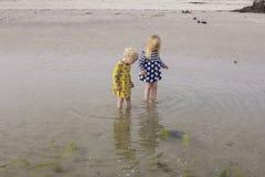 Сестры исследуют естественный мир совместно стоковые фотографии rf