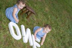 Сестры идентичного близнца сидя в траве стоковые фотографии rf