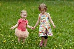 Сестры идя через поле с одуванчиками Стоковые Фотографии RF