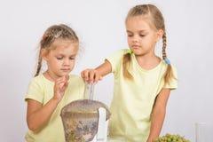 2 сестры сжимали фруктовый сок в juicer Стоковое Фото