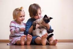 Сестры с котом Стоковая Фотография RF