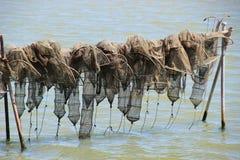Сети креветки в Scardovari преследуют, Италия Стоковые Изображения