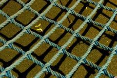 Сетка веревочки Стоковая Фотография