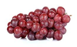 сетка виноградины eps 8 предпосылок совместимым сделанная иллюстратором отсутствие красной белизны транспарантов Стоковые Изображения RF