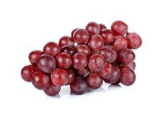 сетка виноградины eps 8 предпосылок совместимым сделанная иллюстратором отсутствие красной белизны транспарантов Стоковые Фотографии RF