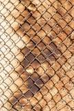 Сетка металла на деревянной предпосылке Стоковые Фотографии RF