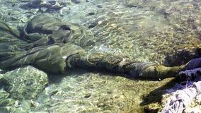 Сетка рыболова в море стоковые изображения